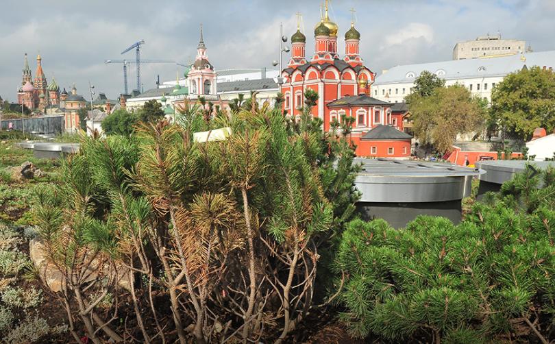 Парк «Зарядье» открылся в центре Москвы в сентябре прошлого года. Фото: архив
