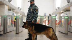 Число преступлений в столичном метро за 5 лет снижено вдвое. Фото: архив